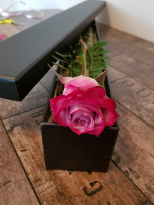 Single boxed rose