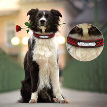 Personalized Leather Dog Collar with Name Plate & Phone ID Tag - The Trove Shop