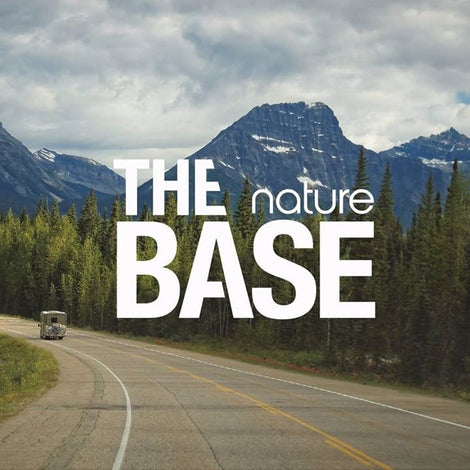 The BASE nature