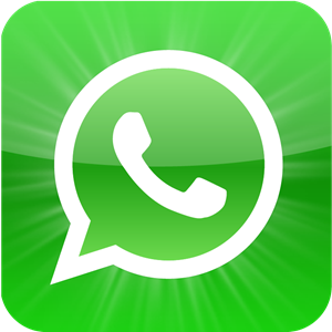 whatsapp contact us