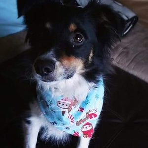 Rosco the Sloth Dog Bandana - Paws & Prints Studio