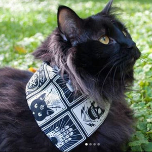 Tarot Card Dog Bandana - Paws & Prints Studio
