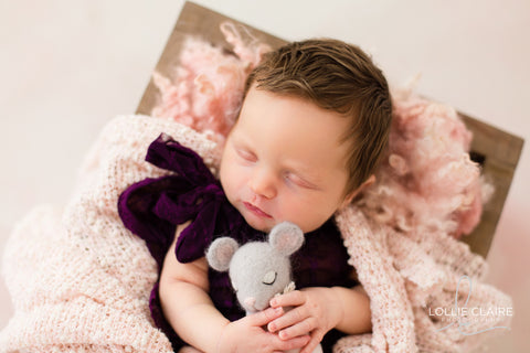 Exclusive Newborn Photography Session - Lollie Claire Photography