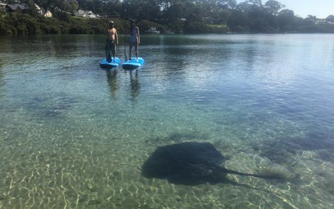 Region X -  Hire a Kayak or Stand up Paddling Board (SUP) in Batemans Bay