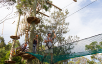 Taronga Zoo - Wild Ropes