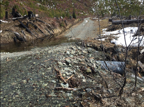 washed out logging road with snow on sides of road
