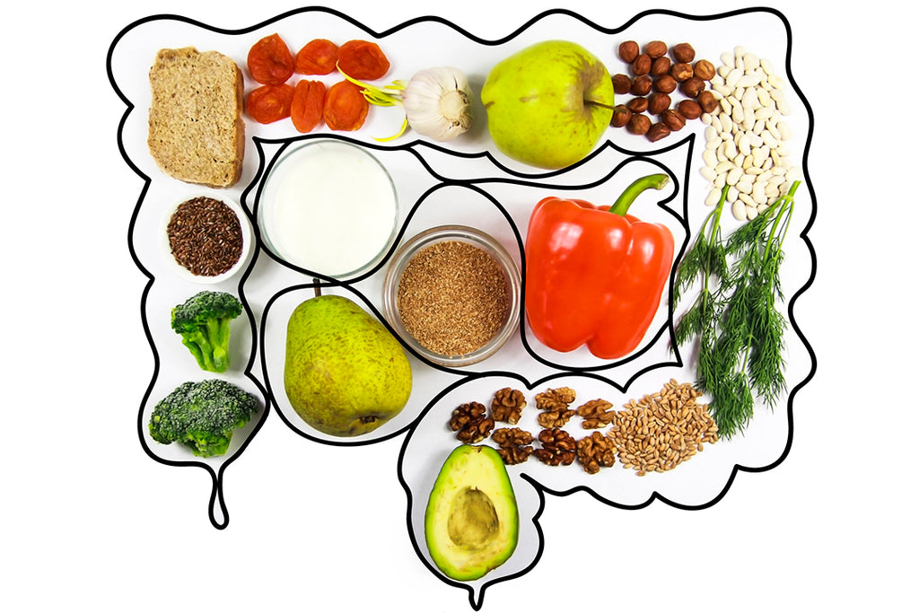 healthy food in the gut