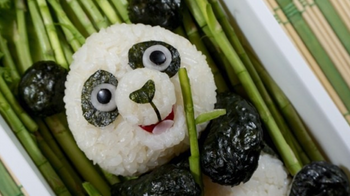 Make your own Bento Box- Fun Fun Fun!