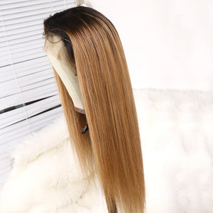Preferred Hair Brown Long Straight Wig of Human Hair with Baby Hair Brazilian Ombre Lace Front Wig for Women