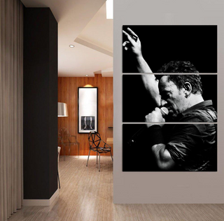 Bruce Springsteen A Black and White Night 3 Piece Canvas