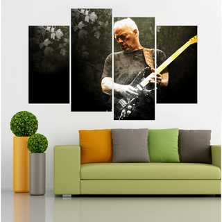 David Gilmour Guitar Solo 4 Piece Canvas