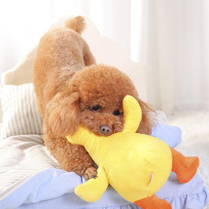 Yellow Duck  Interactive Toy