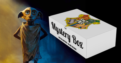 Harry Potter Official Licensed Mystery Box (Choose your House Edition)