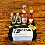 Pink Elephant Cocktail Kit Gift Box
