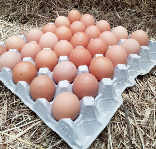 Tray of Mixed Size Close Leece Farm Premium Free Range Eggs - available in IOM ONLY