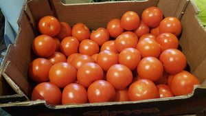 Tomatoes (each)