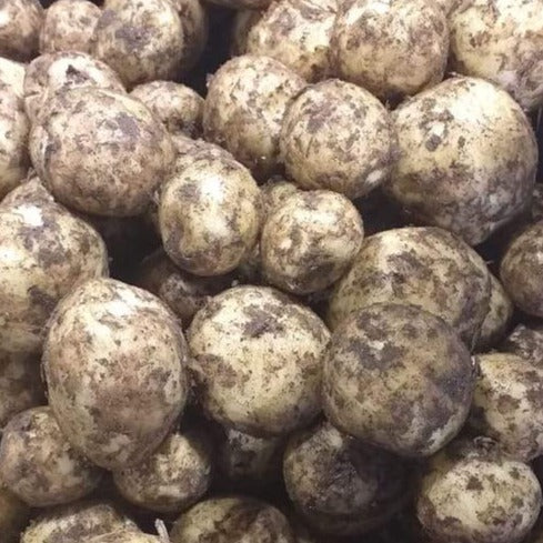 Manx New Potatoes from Lough Dhoo - 0.5kg bags