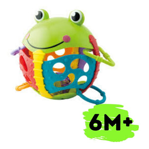 ACTIVITY FROGGY
