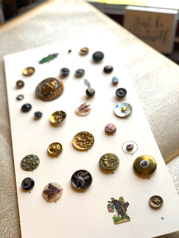 Victorian Insect Button Collection Grandmother's Buttons Jewelry