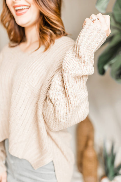 Time Flies Sweater - Taupe