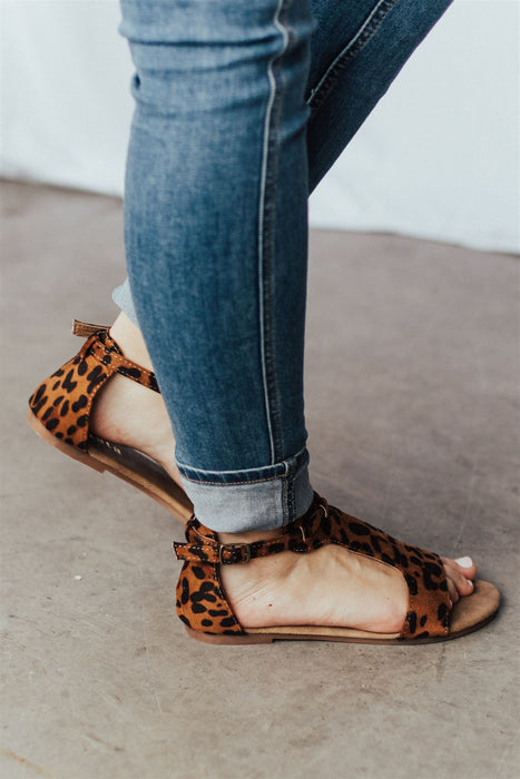 Grounded in Love - Leopard