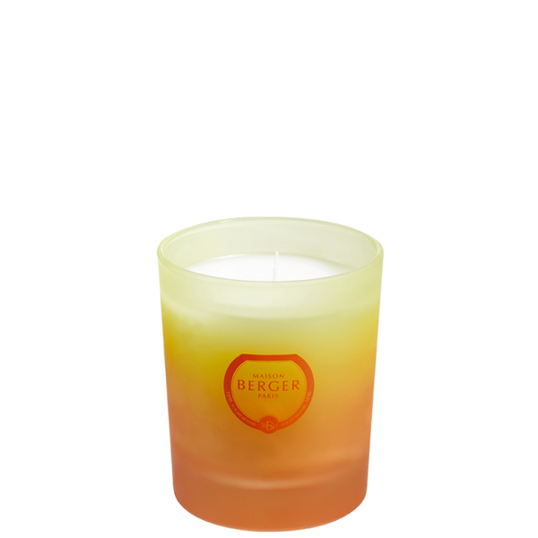 BLISSFUL Coco Monoi Tropical Candle By Maison Berger