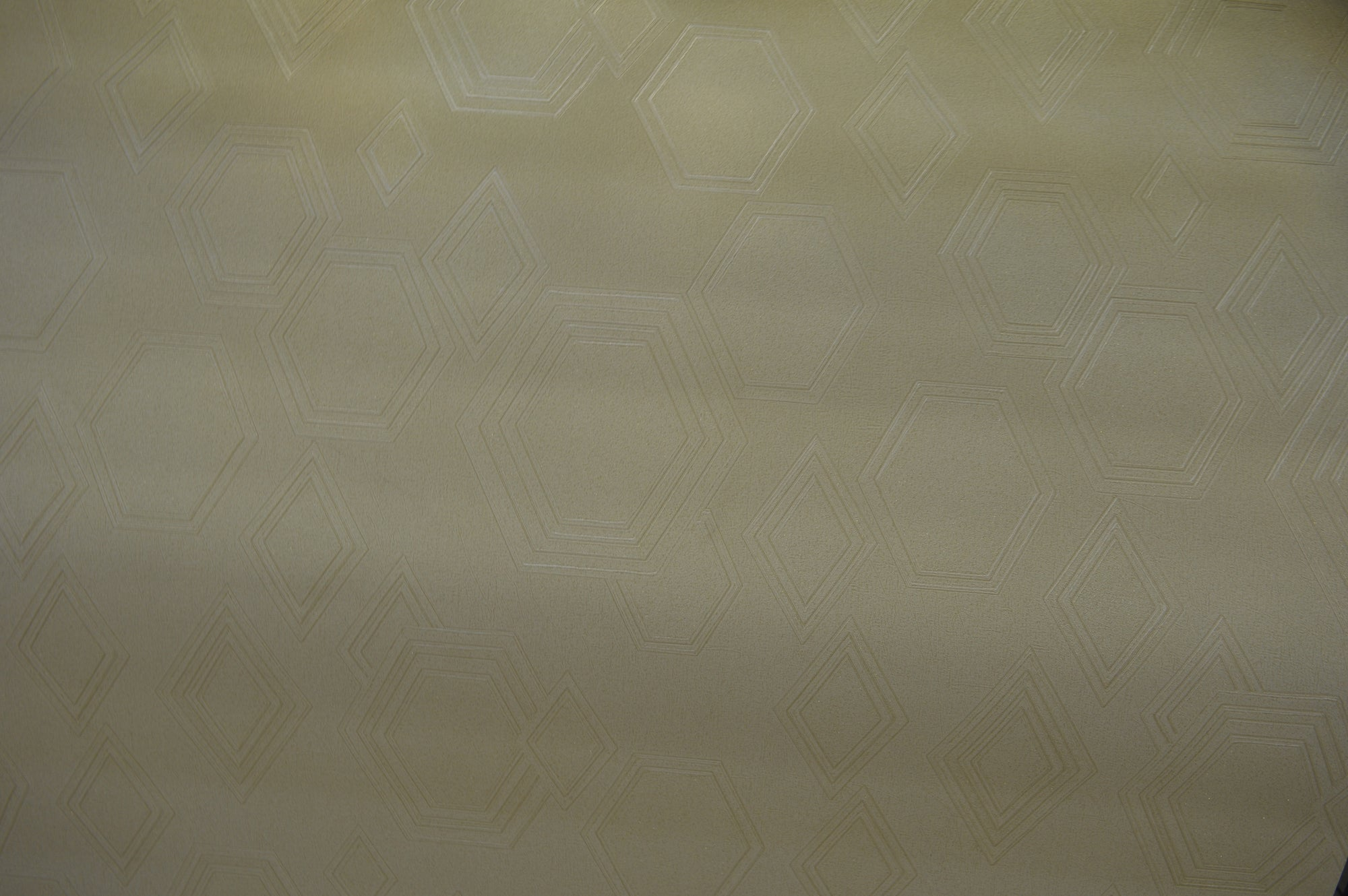 Modern single imprint in shades of beige luxury wallpaper