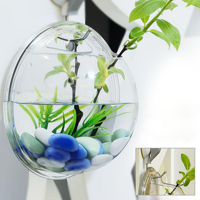 Atlas Hanging Glass Terrarium