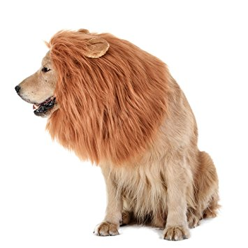 CrewPet Big Dog Lion Mane