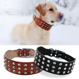 Cool Rivets Studded Best Genuine Leather