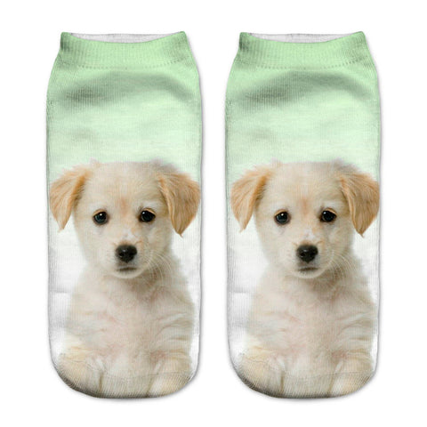Retriever Puppy Sock