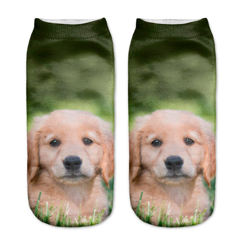 Field Puppy Socks