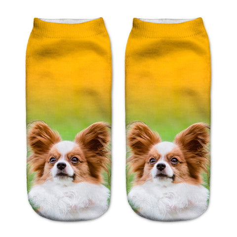 WhiteBrown Pup Sock