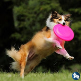 Barktek Ultraflex Dog Toy Frisbee Hot Pink / M