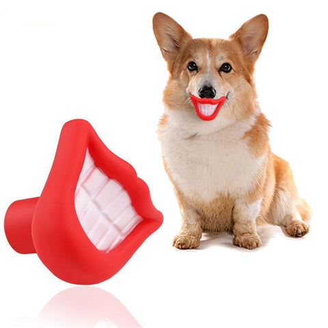 PetSafe Smiley Pacifier