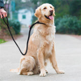 Snap Solid Dog Leash, 5 foot