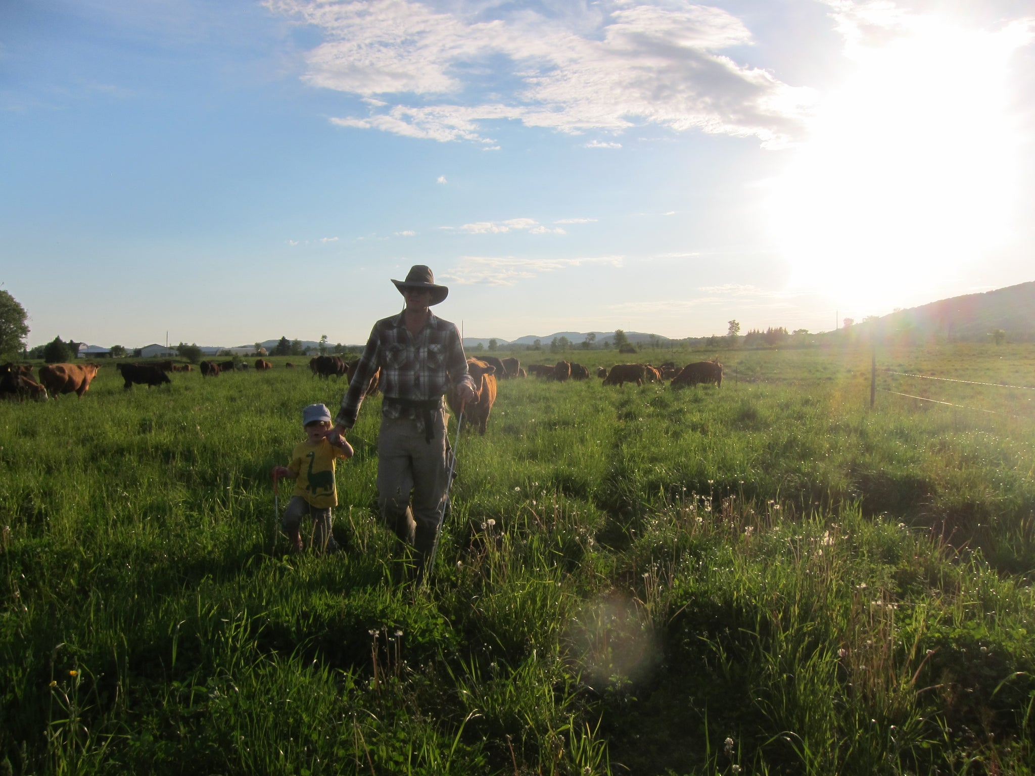 The harvesting season for grass-fed and grass-finished beef