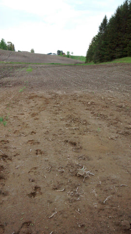 Tilled Field to be Planted