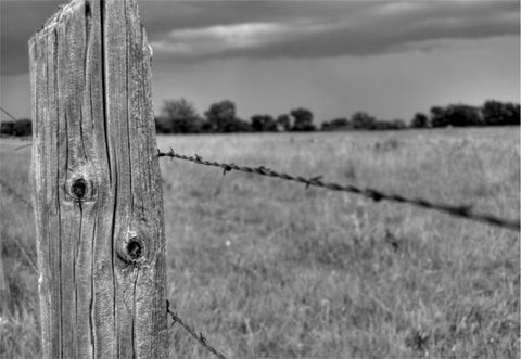 Grazing Post Fence Post