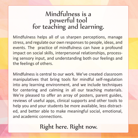 Mindful Curriculum™ Kits