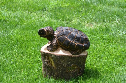 Chainsaw Carved Turtle