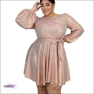 Curvy Fairy Pink Flare Party Dress 2X