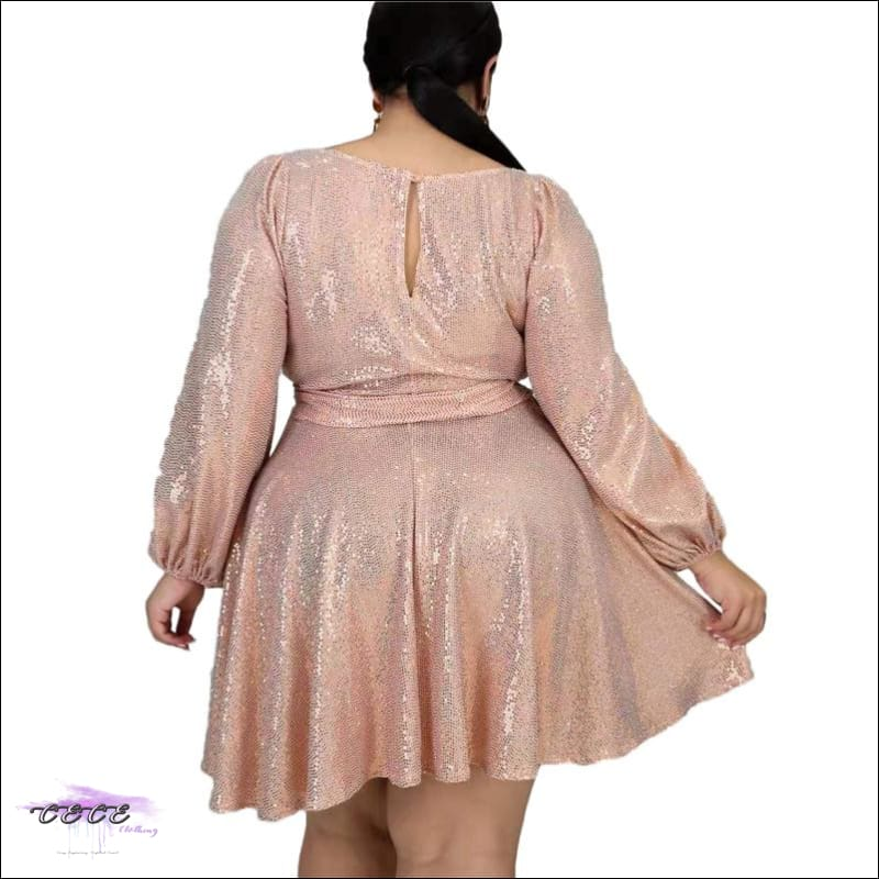 Curvy Fairy Pink Flare Party Dress
