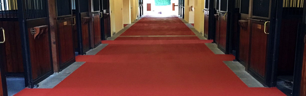 Flooring for Horse Breeding Barns