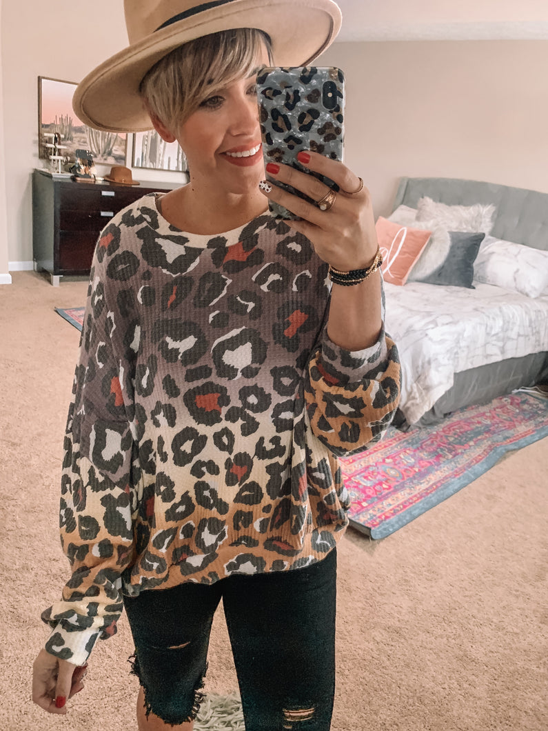 Cozy Kitty Top