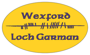 Ogham Art County Wexford Ireland Bumper Sticker
