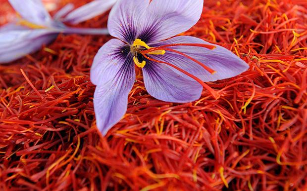 The Ayurvedic Healing Benefits of Saffron (Recipe)