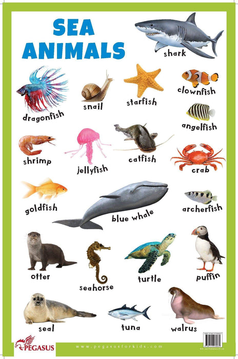 Sea Animals - Thick Laminated Primary Chart