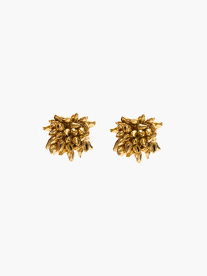 Seashell Stud Earrings | Gold Seashell Stud Earrings | Gold