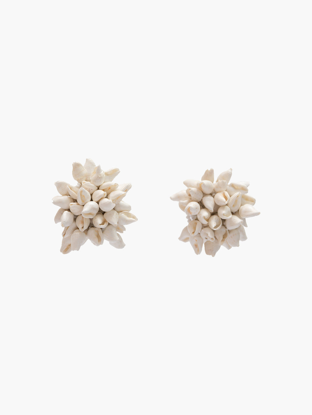 Seashell Stud Earrings | Natural